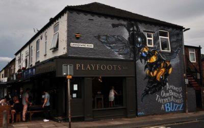 Playfoots